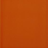 Compendium Marmalade Gloss Tiles