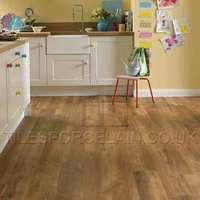 http://www.tilesporcelain.co.uk/Antique Oak Vinyl Flooring